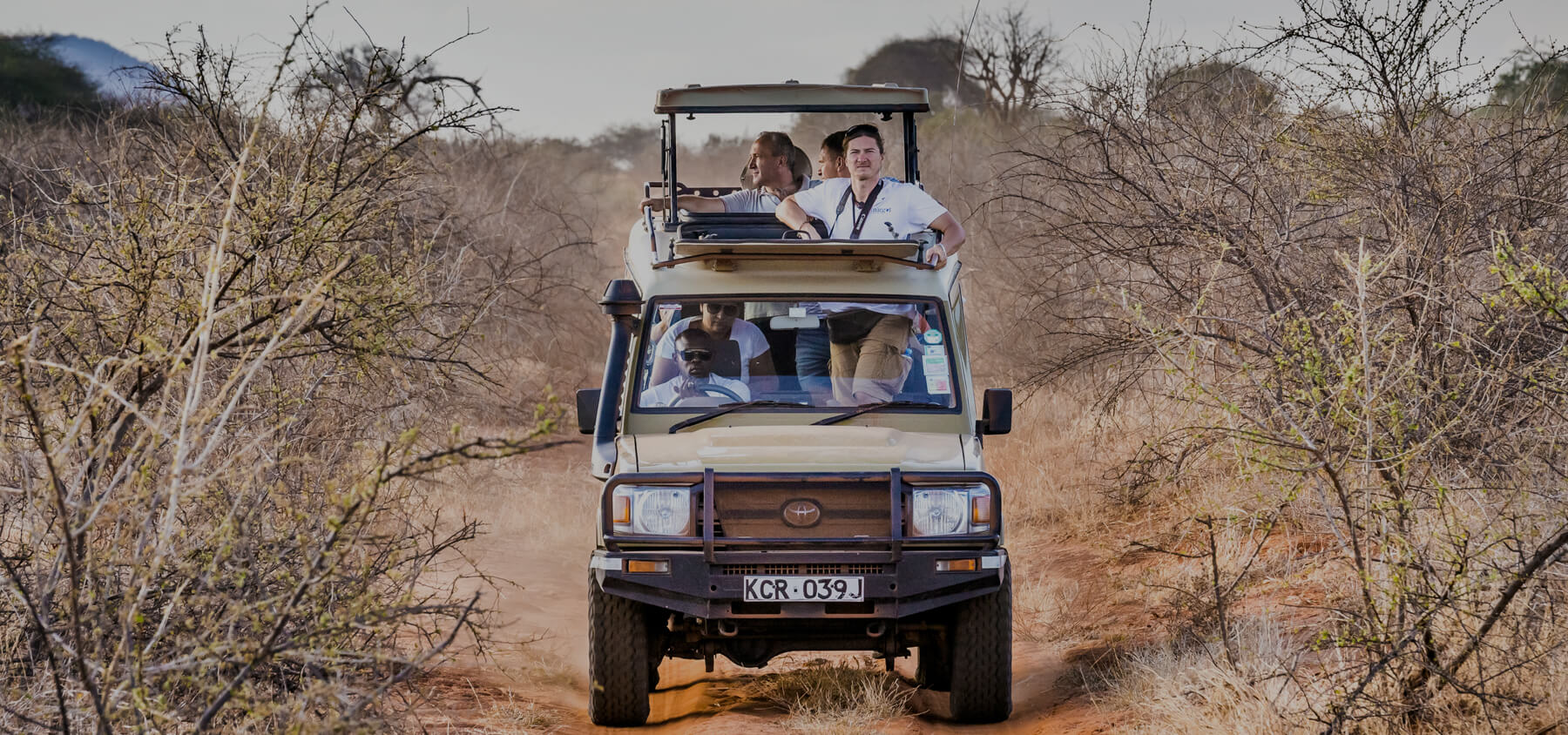 African Diurnal Safaris - African Holidays, African Animals Visit
